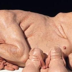 Hybrid Tiere werden Wirklichkeit: US-Forscher kreuzen Schwein und Mensch