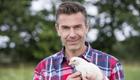 Projekt Hühnerhof,deckt auf