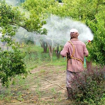 Unfassbar: Monsanto fälscht Studien und stuft Glyphosat als unbedenklich ein!