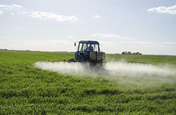 Vergiftet: Agrarkonzern verliert Prozess