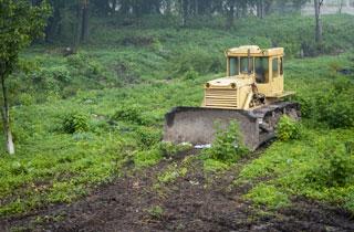 Unter Landraub leiden Umwelt und Menschen