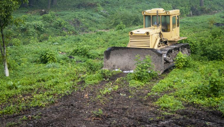 Landgrabbing gefaehrdet die Umwelt und die Menschen