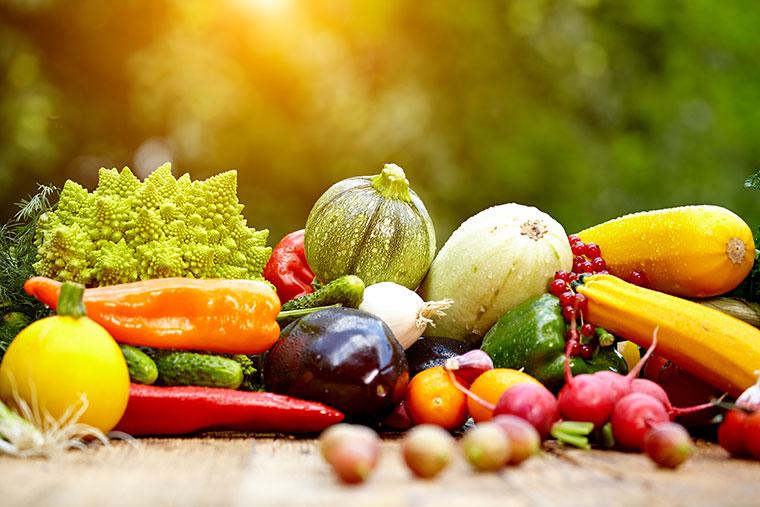 Obst und Gemuese bracuht der Koerper