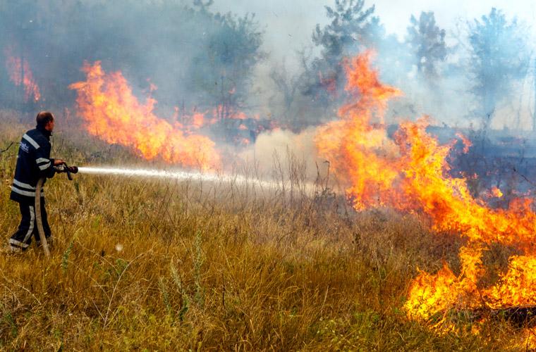 Brände nach wochenlanger Hitze, menschengemachter Klimawandel