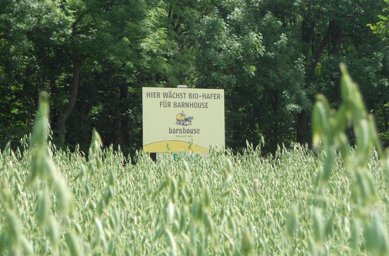 Bio-Boden, Bio-Landwirtschaft, Barnhouse