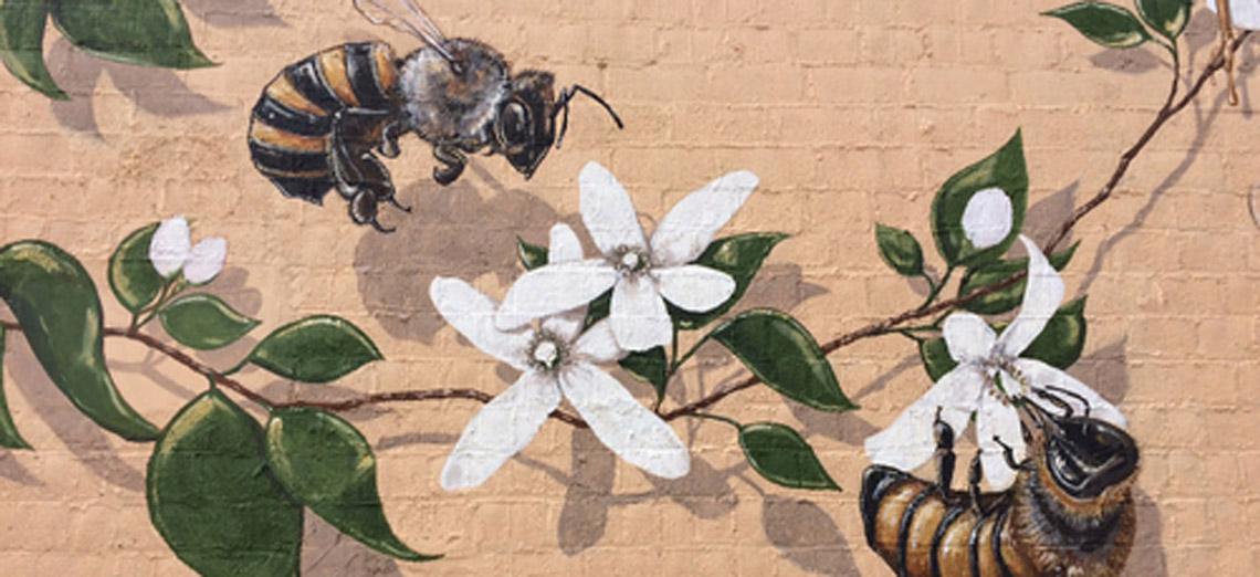 Das Wohl des Bienenstocks