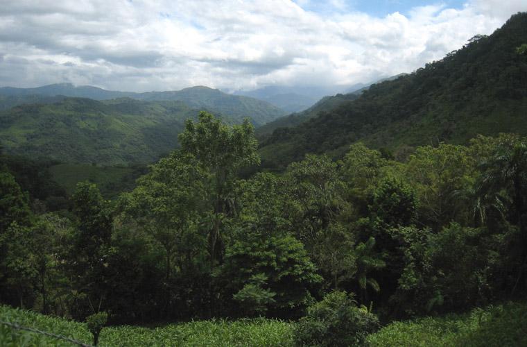 Panorama Ecuador, Anden, Dschungel