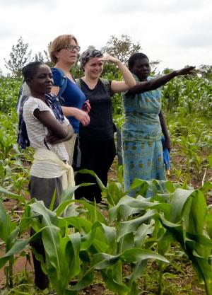 Feldarbeit ist in Kenia Frauenarbeit