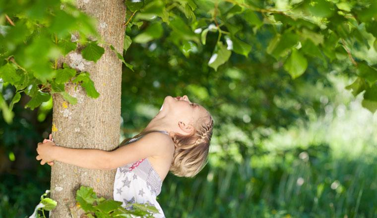 Biophilia Effekt die Natur lässt uns gesunden, Bäume umarmen