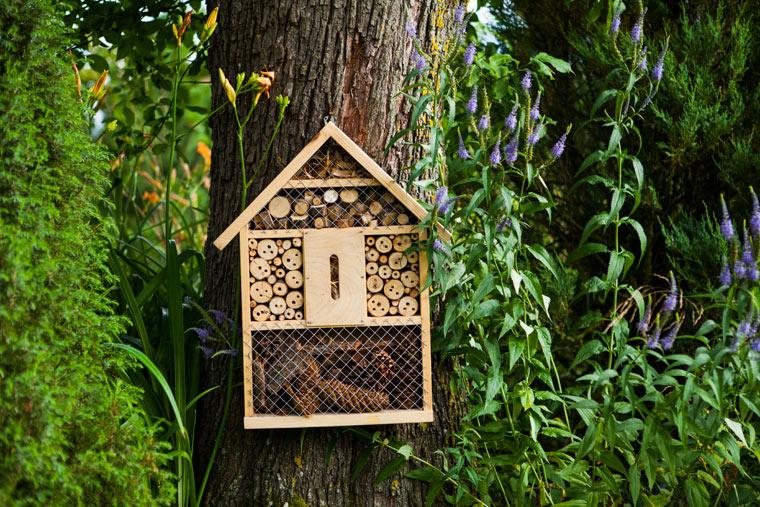 Naturbühnen ohne Pflegeaufwand: Insektenhotels