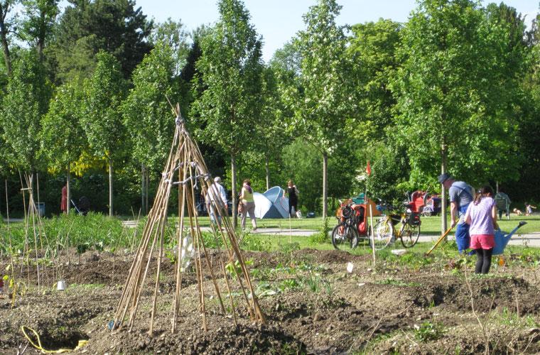 Urban Gardening, urbanes Gärtnern