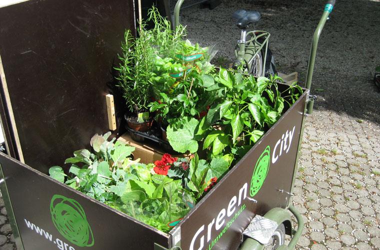 Gewürze und Gemüse aus der eignen Stadt