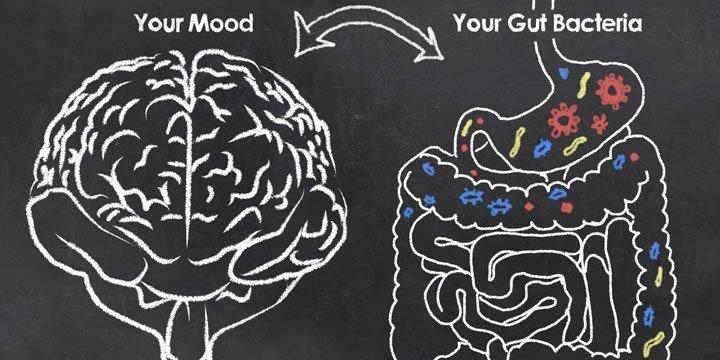 Ernährung und Psyche: wie Lebensmittel für Stimmungsschwankungen sorgen