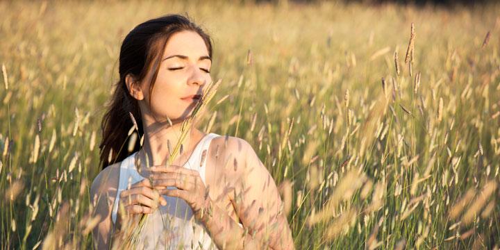 So holen Sie den Duft des Sommers in Ihr Zuhause