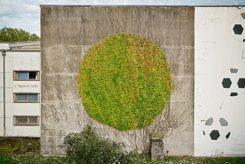 urban gardening wilder wein efeukunst f r karge w nde. Black Bedroom Furniture Sets. Home Design Ideas