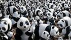 1600 Panda World Tour: Pappmaché Pandas für Aufmerksamkeit