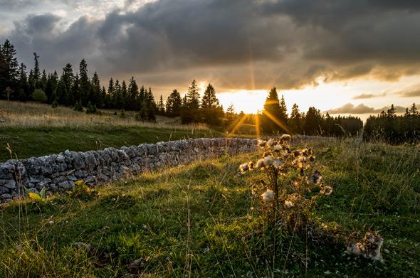 Sommerurlaub in der Schweiz - unvergessliche Ferien auf der Alp