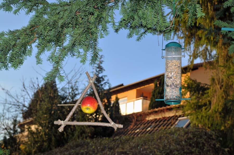 vogelfutter selbstgemacht und basteln von vogelfutter stellen. Black Bedroom Furniture Sets. Home Design Ideas