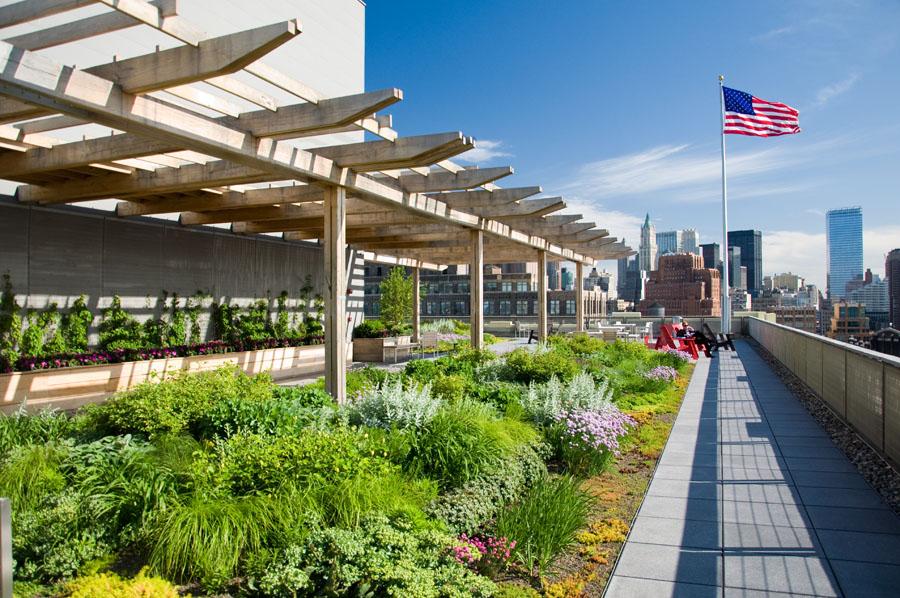 Intensive Und Extensive Dachbegrünung: Ökologisch Und ökonomisch Gut Intensive Extensive Dachbegrunung Nachhaltig