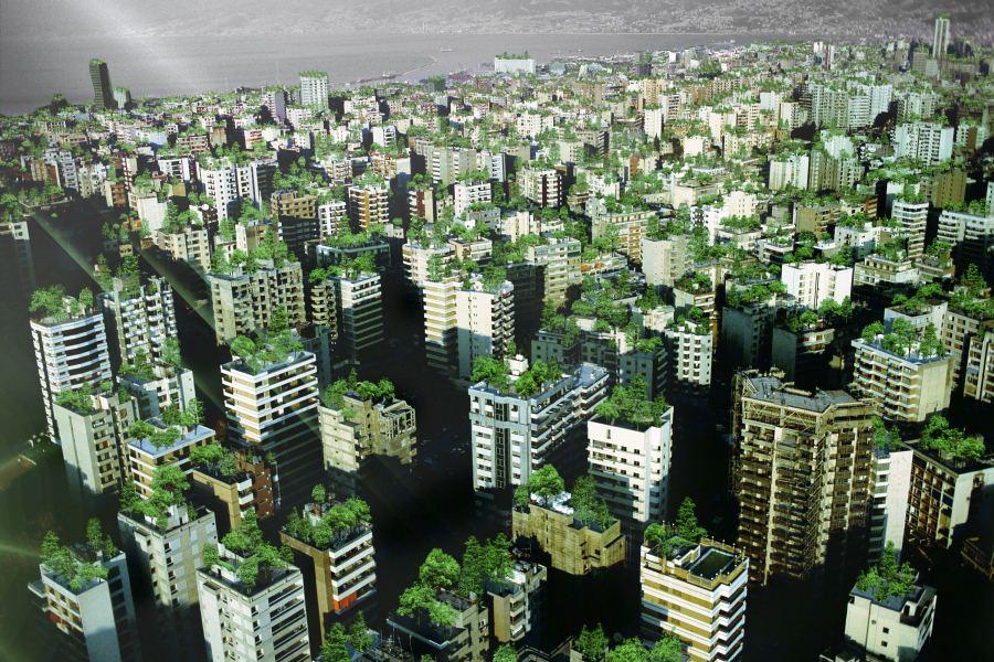 Bild1 beirut - Garten Beirut