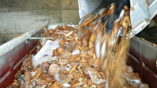 Nachhaltiger Konsum: Lebensmittel-Verschwendung in Bildern
