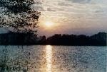 Frühlingserwachen  am See