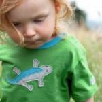Cotton People Organic - T-Shirt Echse grün, kbA