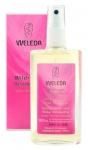 Wildrosen Deodorant von Weleda AG Inhalt ( 100 ml)