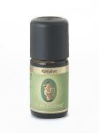 Kampher Öl von Primavera Life GmbH Inhalt ( 5 ml)