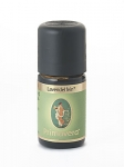 Lavendel Fein kbA Öl von Primavera Life GmbH Inhalt ( 5 ml)