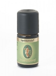 Speiklavendel kbA Öl von Primavera Life GmbH Inhalt ( 5 ml)