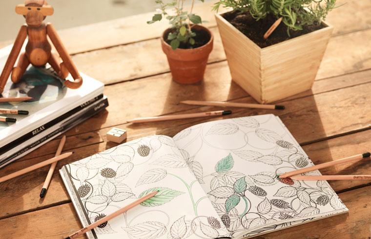 Sprout Stifte und Malbuch