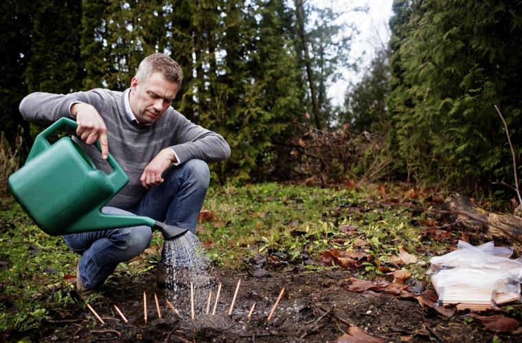 Sprout Stifte ganz einfach einpflanzen und gießen