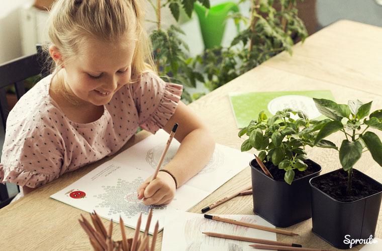 Sprout Stifte ohne Giftstoffe perfekt für Kinder