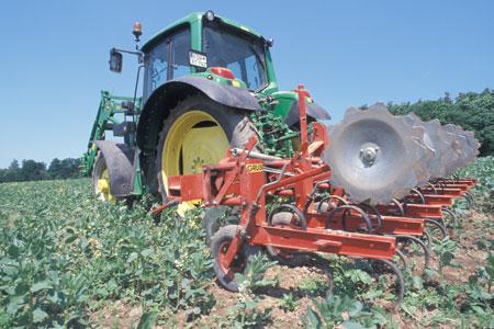 Statt Pestizide einzusetzen, wird das Beikraut mechanisch entfernt. Was besser für die Umwelt ist, kann für den Betrieb unwirtschaftlich sein.
