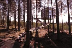 Nachhaltiger Luxus Im Exklusiven Baumhaus