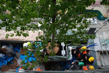 Vertikaler Wald in Mailand: Nachhaltiges Bau Projekt bald fertiggestellt