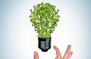 2 Ecodesign-Shoppingtipps: Schönes und Nützliches