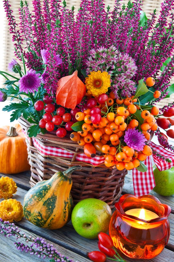 Dekorieren im Herbst mit Materialien aus der Natur