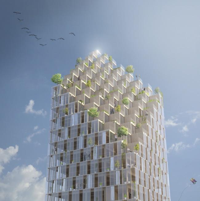 Neuer Trend im nachhaltigen Bauen: Holz-Hochhäuser und ihre Vorteile