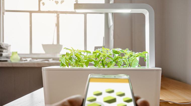 Indoor-Gardening-System