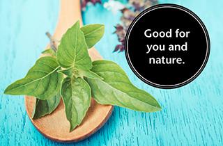 Ressourcen schonende Tipps für die Küche