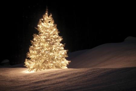 Weihnachtsbrauch Deutschland: Woher kommen Weihnachtsbaum, Krippe und Adventskranz
