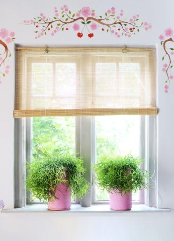 Gesund und pflegeleicht: Die aktuellen Trends bei Zimmerpflanzen