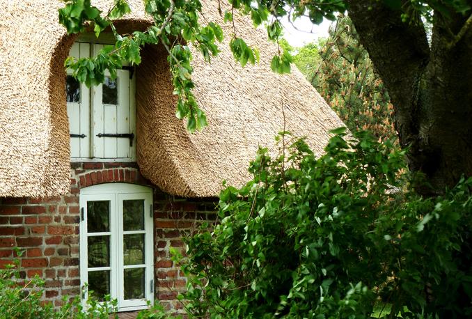 Nicht nur fürs dachdecken gut, sondern auch zum dämmen © flickr oxfordian (CC BY-ND 2.0)