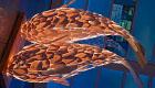 Faszination Fisch: Leuchten von Frank Gehry