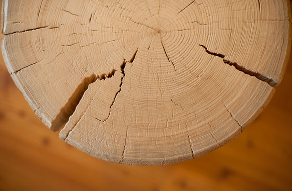 Massivholzmöbel als Klimaretter