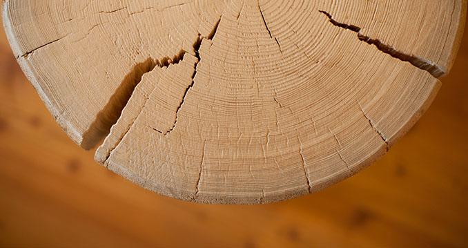 Massivholz bindet CO2 und leistet so einen Beitrag zum Erhalt unserer Umwelt © Anna, Chiemseehotel (CC BY 2.0)