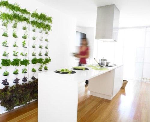 Mini-Garten: Blumen, Kräuter oder Gemüse vertikal anbauen