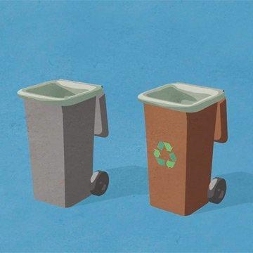 Bio-Abfallsäcke anstelle von Maden & Schimmel